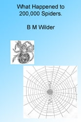 What Happened to 200,000 Spiders. Illustrated ebook by B M Wilder
