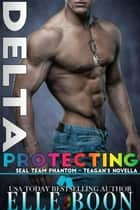 Delta: Protecting Teagan - SEAL Team Phantom Series, #6 ebook by Elle Boon