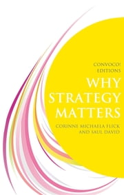Why Strategy Matters ebook by Flick Michaela Corinne,David Saul