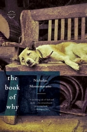 The Book of Why - A Novel ebook by Nicholas Montemarano
