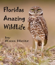 Florida's Amazing Wildlife ebook by Russ Heitz