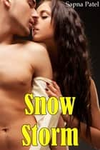 Snow-Storm ebook by Sapna Patel