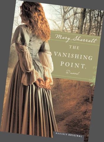 The Vanishing Point ebook by Louise Hawes