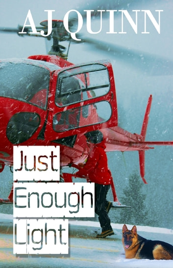 Just Enough Light eBook by AJ Quinn