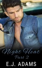 Night Heat Part 2 - Night Heat: An Alpha Millionaire Romance, #2 ebook by E.J. Adams