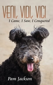 Veni, Vidi, Vici - I Came, I Saw, I Conquered ebook by Pam Jackson