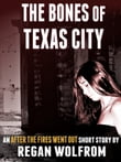 The Bones of Texas City: An After The Fires Went Out Short Story