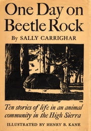 One Day On Beetle Rock ebook by Sally Carrighar