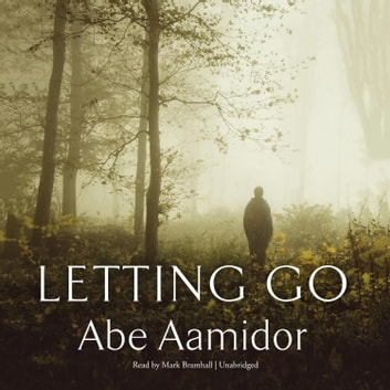 Letting Go audiobook by Abe Aamidor