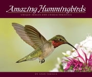 Amazing Hummingbirds - Unique Images and Characteristics ebook by Stan Tekiela