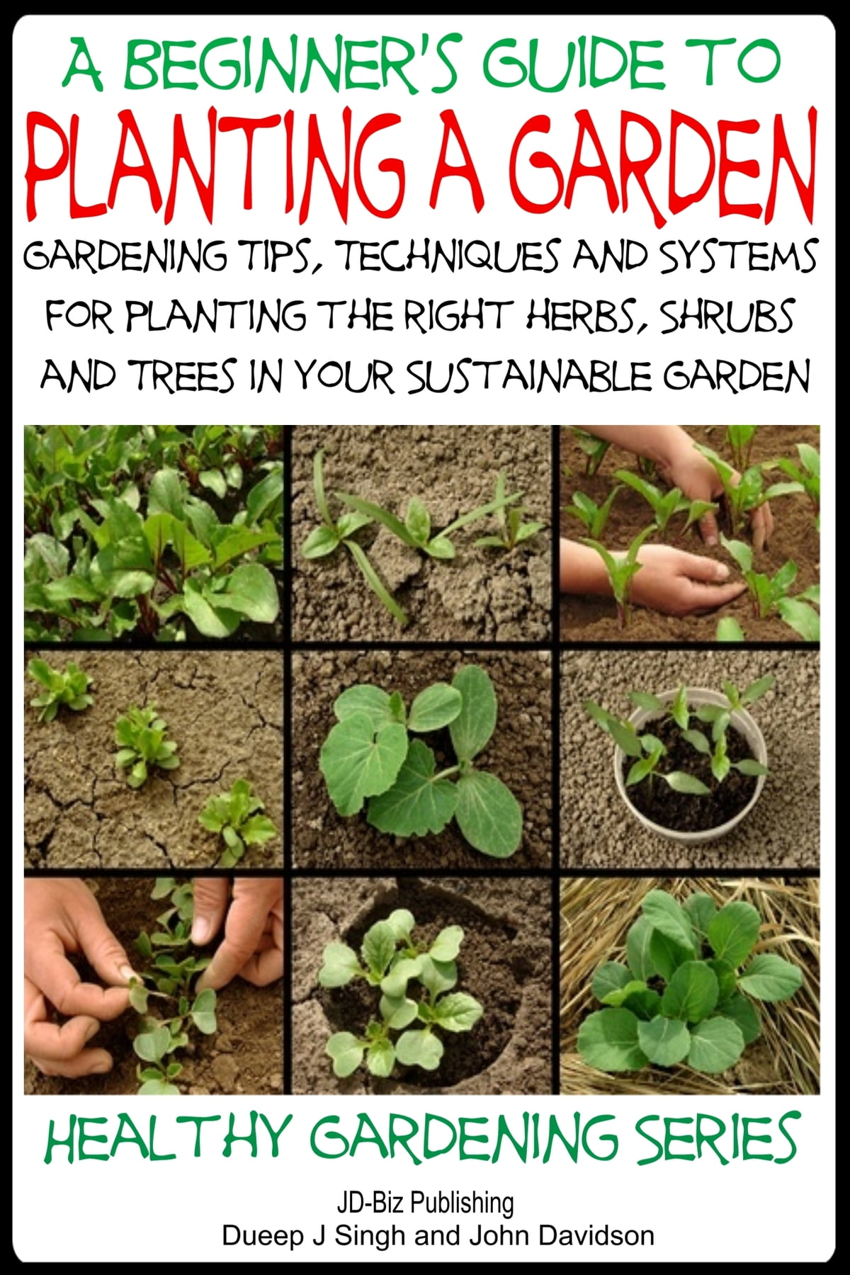 A Beginner\'s Guide to Planting a Garden: Gardening Tips, Techniques ...
