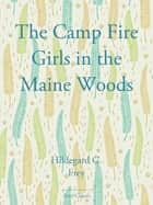 The Camp Fire Girls in the Maine Wood ebook by Hildegard G. Frey