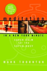 Meditation In A New York Minute ebook by Mark Thornton