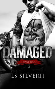 Damaged ebook by LS Silverii