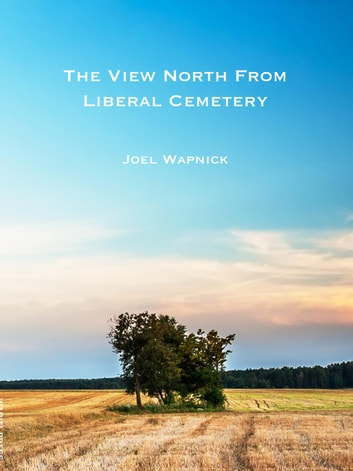 The View North from Liberal Cemetery eBook by Joel Wapnick