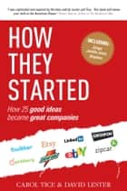 How They Started ebook by David Lester, Carol Tice