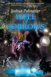 Well of Sorrows ebook by Joshua Palmatier