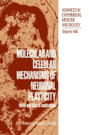 Molecular and Cellular Mechanisms of Neuronal Plasticity - Basic and Clinical Implications ebook by Yigal H. Ehrlich