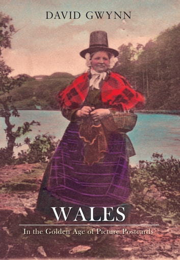Wales In the Golden Age of Picture Postcards ebook by David Gwynn