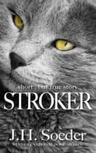 Stroker ebook by J. H. Soeder
