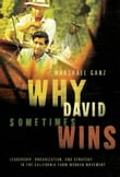 Why David Sometimes Wins : Leadership Organization and Strategy in the California Farm Worker Movement