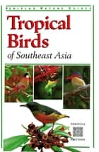 Tropical Birds of Southeast Asia ebook by Morten Strange